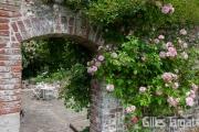 france, region normandie, seine maritime, veules les roses, maoulin des cressonnières, M et Mme de crepy, chambres d'hôtes,