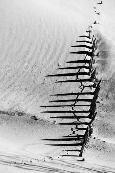 par-la-dune